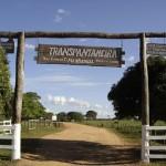 jaguar_Scenery_Transpantaneira-gate_jpg