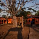 jaguar_lodge-grounds