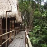 tariri-amazon-lodge