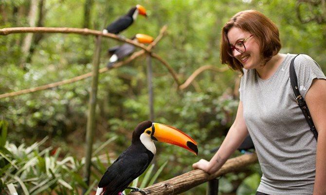 bird, park, brazil,